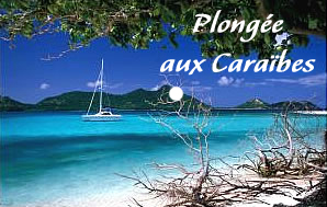 FirstGrenada.com